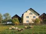 Hof in Friedersdorf