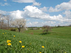 Frühlingslandschaft bei Röthenbach